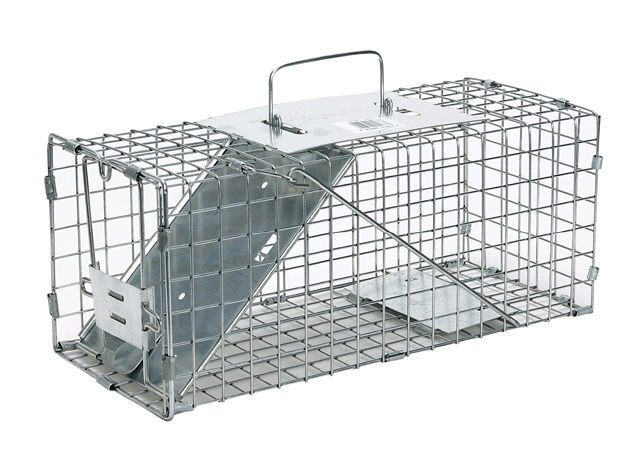 Where to find LIVE ANIMAL TRAP SMALL in Portland