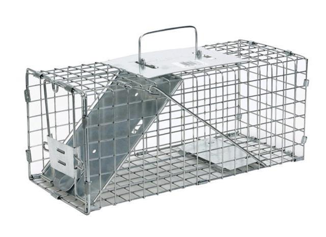 Where to find LIVE ANIMAL TRAP LARGE in Portland